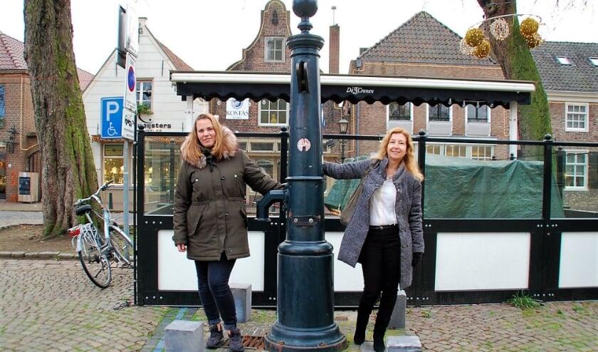 <p>Jolanda Louwers uit Oostelbeers zit dankzij het contact met haar mentor Marielle Nigg weer beter in haar vel. Ook kreeg ze een leuke stageplek.</p>