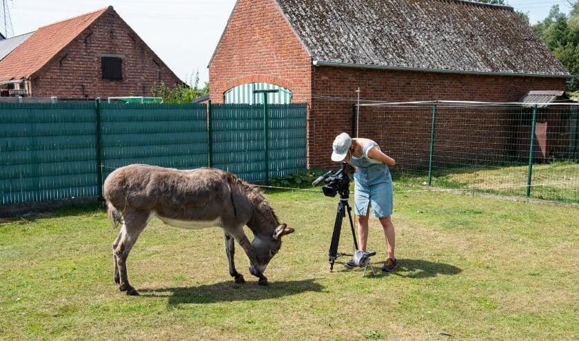 <p>Van Duppen aan het werk in Kerkbrugge-Langerbrugge. De ezel is het fabeldier in het sprookje. Foto Hanse Cora.</p>