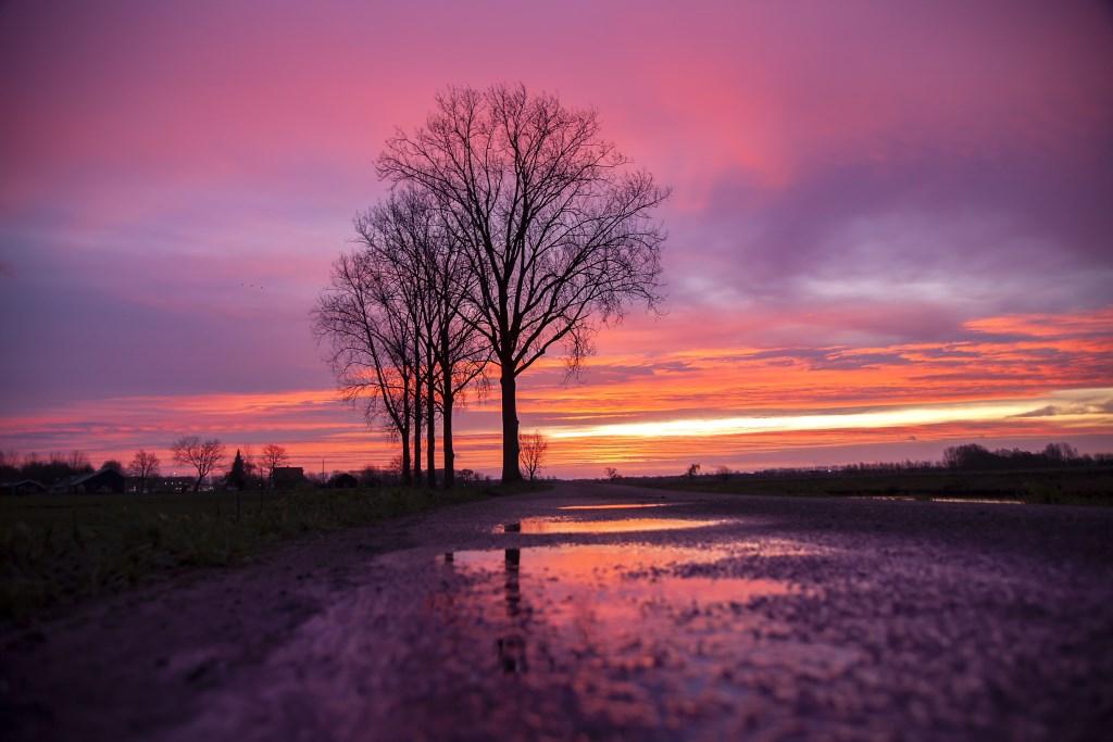 Zonsopkomst gespiegeld in een regenplas Foto: Betuwefotograaf.nl © DPG Media