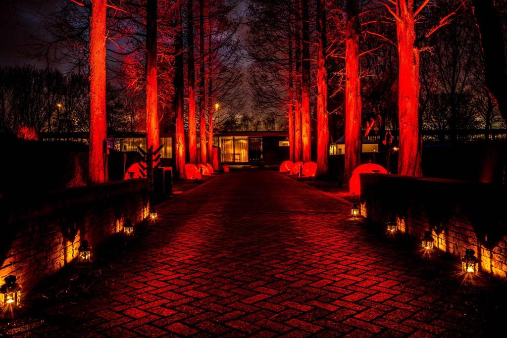 Lichtjesavond in Pernis. Foto: Alex Bussenius Foto: LEXIE46pictures © DPG Media