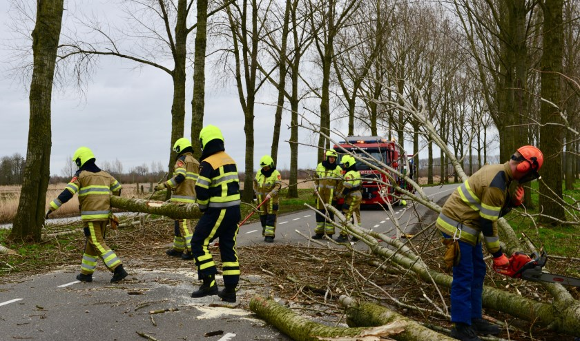 Brandweer was snel ter plaatse om Sonsbrug vrij te maken, omdat de wortels rot zijn vielen er meer bomen om. Toestand is hier onveilig.