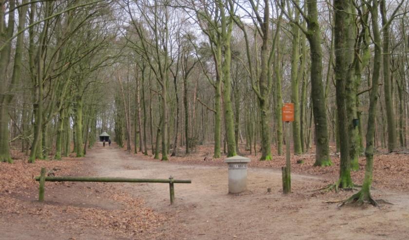 Startpunt Hullenberglaan. Foto: Ribberink