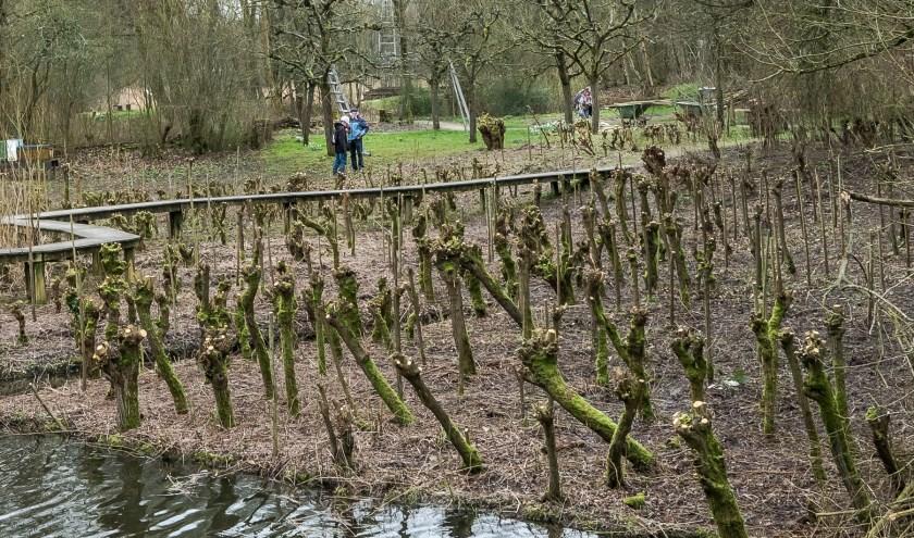 Werk in de Natuur- en Landschappentuin. Op 14 maart is het NLDoet. U kunt zich voor groene klussen aanmelden via www.nldoet.nl bij de Natuurtuin, de Hof van Seghwaert of  Buurttuin Zoete Aarde. Foto: E.B.