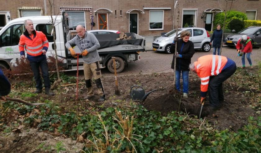 Vrijwilligers van de Plantweerd en medewerkers van Het Groenbedrijf planten bomen in de Plantweerd