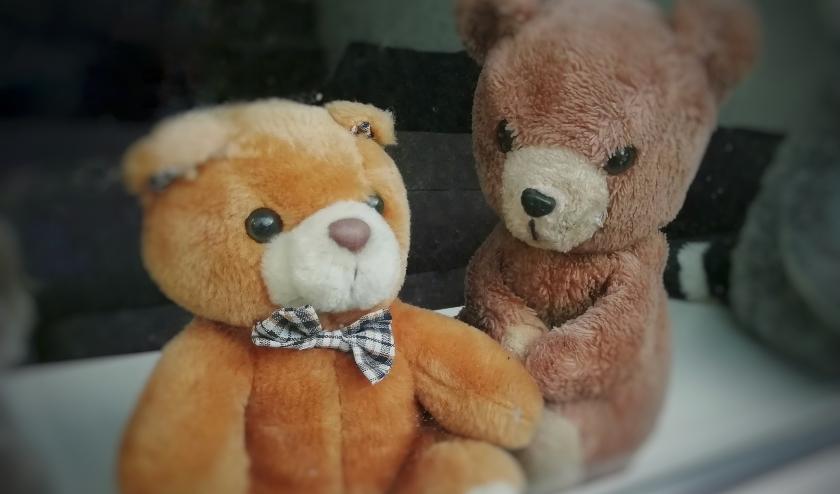 Overal verschijnen steeds meer beren voor het raam.