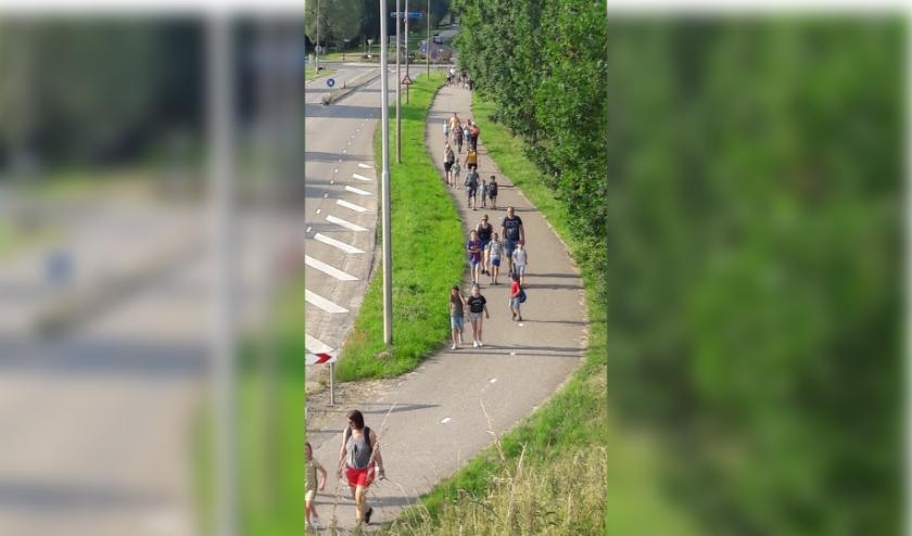 De wandelaars tijdens een eerdere editie in Tolkamer. (foto: M. Heijltjes)