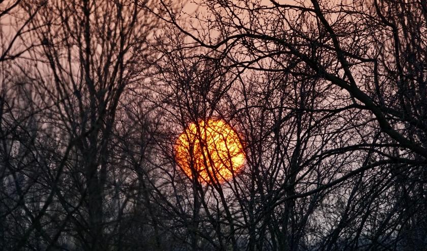 Zonsondergang. Foto: Danielle van Tienen