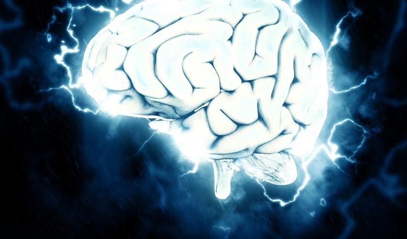 Leendenaren kunnen 3 april hun hersenen laten kraken, in een veilige omgeving, tijdens de eerste Lindse huiskamerquiz.