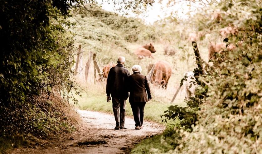 Samen wandelen, zolang als het nog kan en conform de richtlijnen, is goed tegen de eenzaamheid. FOTO: PixaBay.
