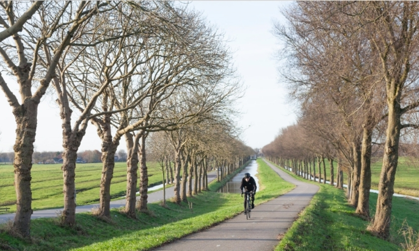 Fietser klimt dijk van de polder Purmer ten noorden van Amsterdam in Nederland op fietspad tussen boomlijnen.