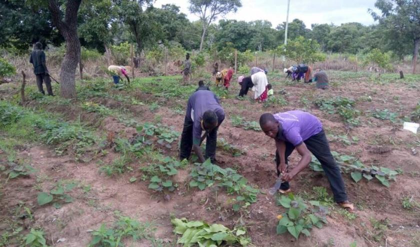 Nu de drinkwatervoorziening in Noord-Ghana op een redelijk hoog niveau is, wil Pompen is Leven zich ook meer richten op water voor de landbouw.