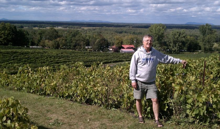 De schrijver in een Canadese wijngaard