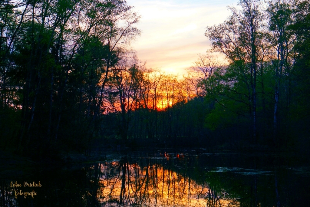 Het Notterveld 's avonds bij zonsondergang. Foto: Coba Vrielink.  © DPG Media