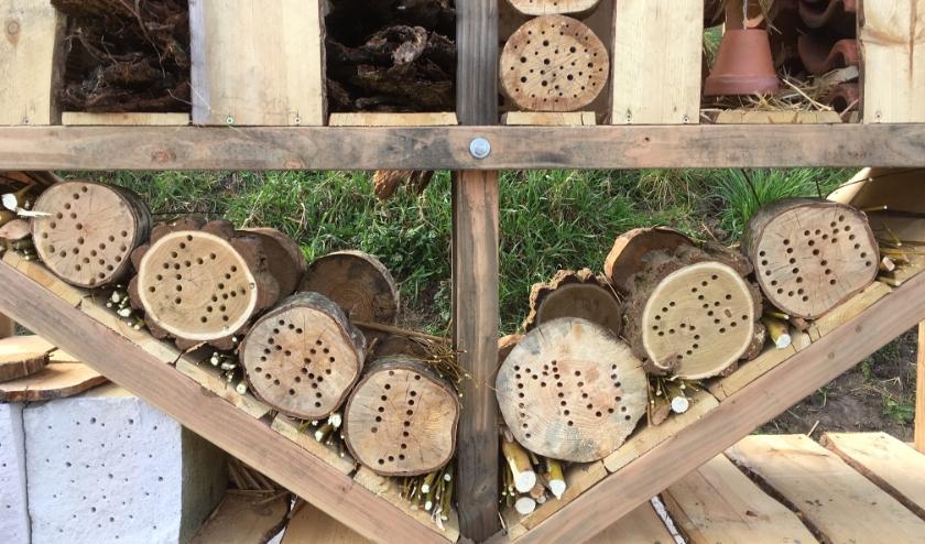 De bijen en overige insecten hebben het hotel al gevonden, nu nog even wachten op de groei van de wilde bloemen.