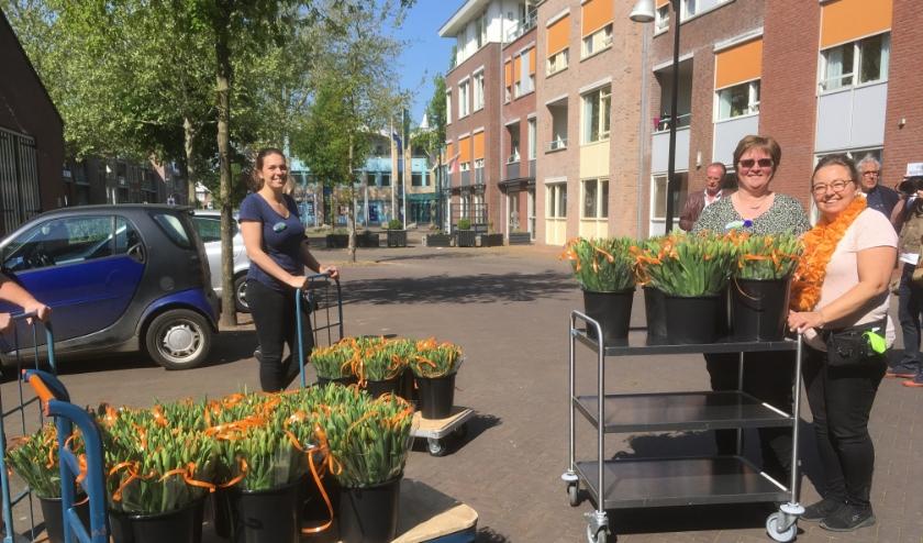 De oranje tulpen arriveren bij Meulenvelden.