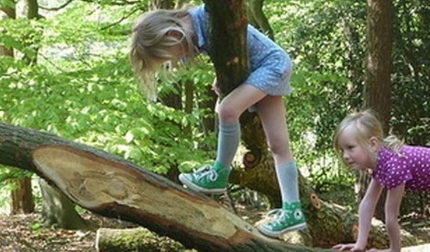 Buitenspeeldag is dit jaar met éxtra veel tips op welke manier kinderen alsnog veilig buiten kunnen spelen. FOTO: Stock.