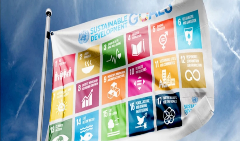 In de Week van de Duurzaamheid gaat het om de  17 Global Goals