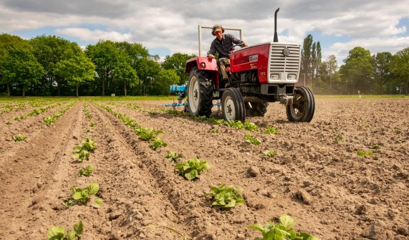 De boerderij in Alphen was in februari de derde in Nederland, inmiddels zijn er al zeven.