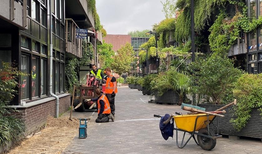 Na de werkzaamheden heeft de straat één versmalde route voor al het verkeer én een kronkelende vorm waardoor fietsers worden afgeremd. (Foto: COEN!).