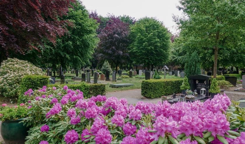 Begraafplaats Sint Petrus. (Foto: EiB / Frans van Beers).