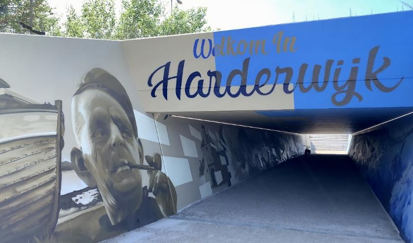 De schildering vertelt aan de sepia zijde van de tunnel een deel van de oude geschiedenis van de stad. (foto: Gemeente Harderwijk)