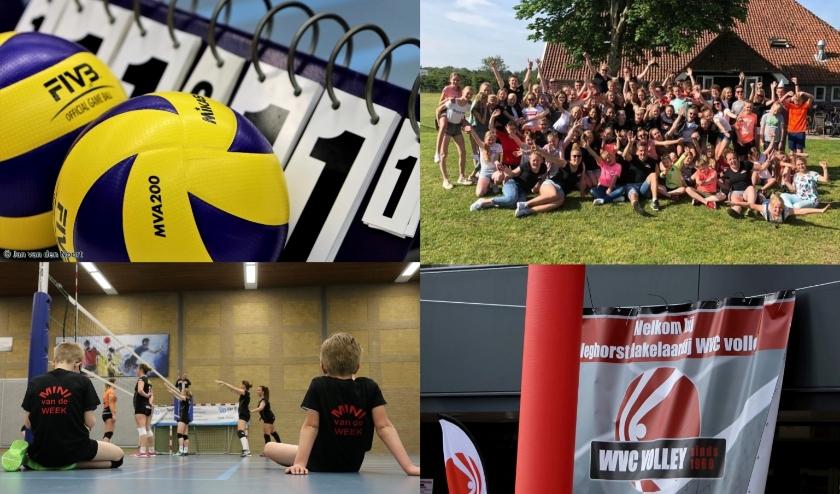 WVC Volley heeft inmiddels ruim 320 leden. (Foto's: Jan van den Noort)