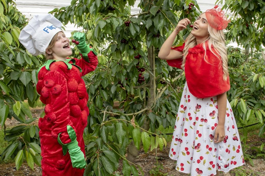De Betuwse kersen zijn overheerlijk; Flipje en kersenprinses in de boomgaard.  © DPG Media