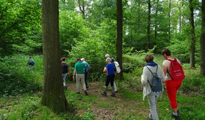 wandelaars bij een eerdere natuurwandeling
