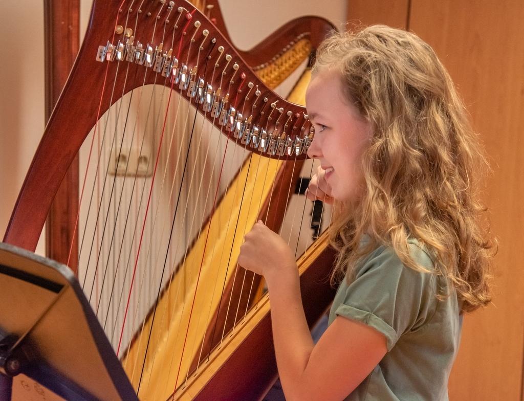 muziekexamen op de harp. Foto: Dick Sanderman © DPG Media