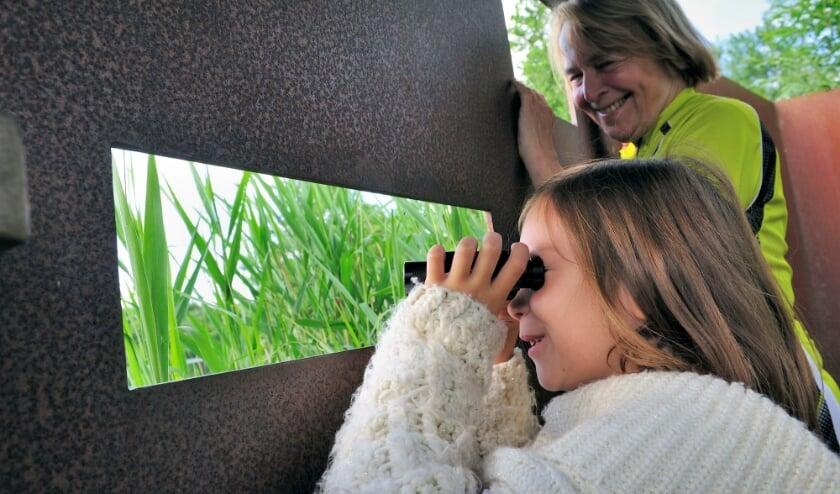Vogels kijken op rotterdams platteland