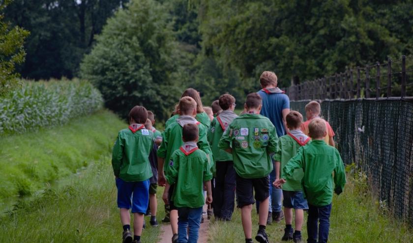 Welpen op zomerkamp