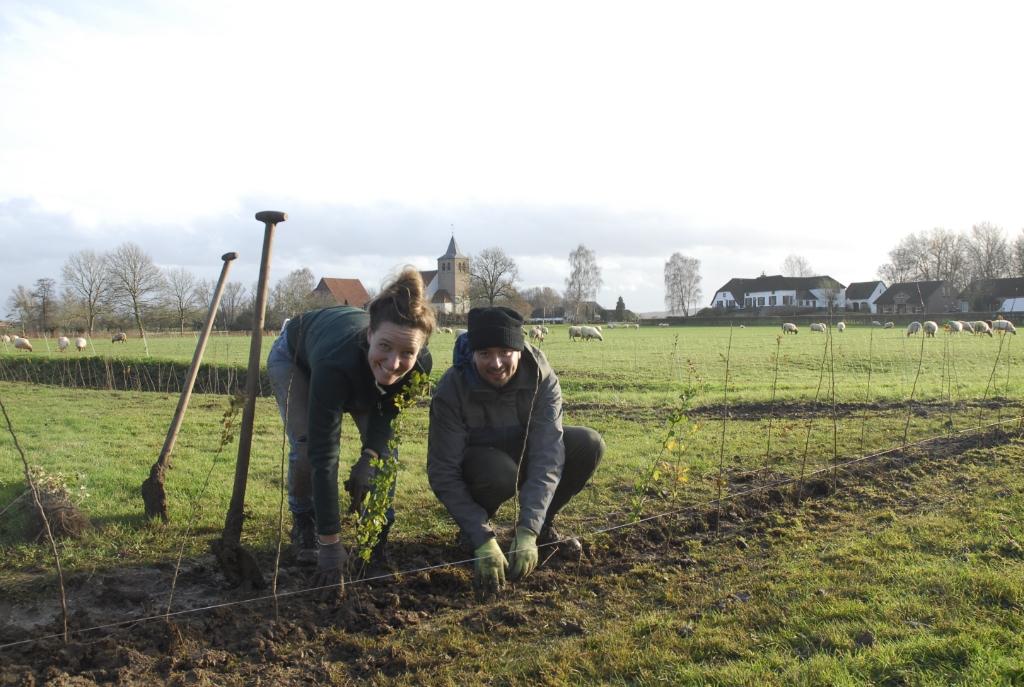 Plantactie 2019 Foto: Stichting Landschapsbeheer Gelderland © DPG Media