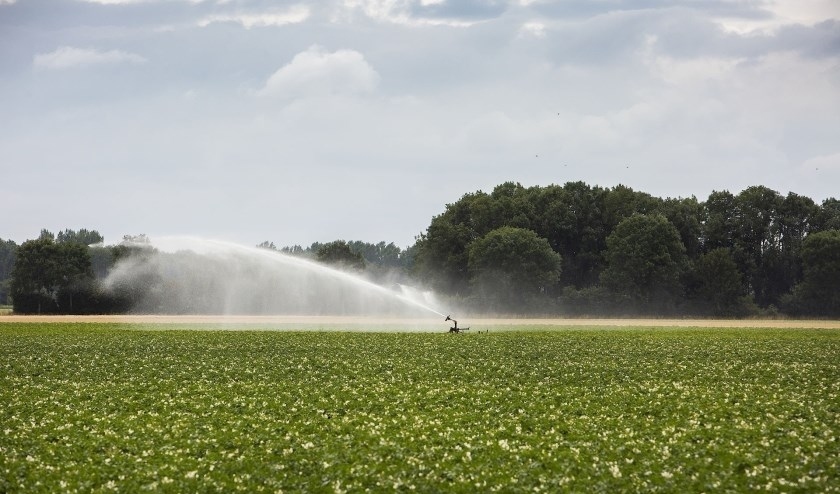 Het land besproeien met oppervlaktewater is vanaf woensdag 10 juni verboden. (foto: PR)