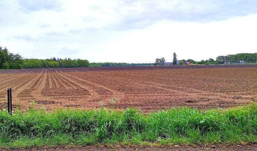 Het karakteristieke gebied Have in Silvolde verdwijnt uit zicht door een zonneveld. (foto: Old Sillevold)