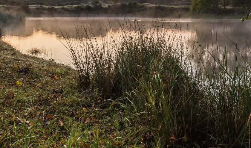 Uitzicht vanaf terras Klein Giethoorn – van website Kl. Giethoorn (met toestemming eigenaar.)