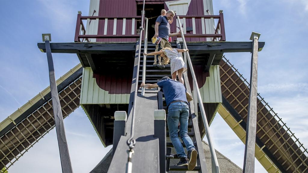 Molen 'De Oostenwind' Foto: Rob Fritsen © DPG Media
