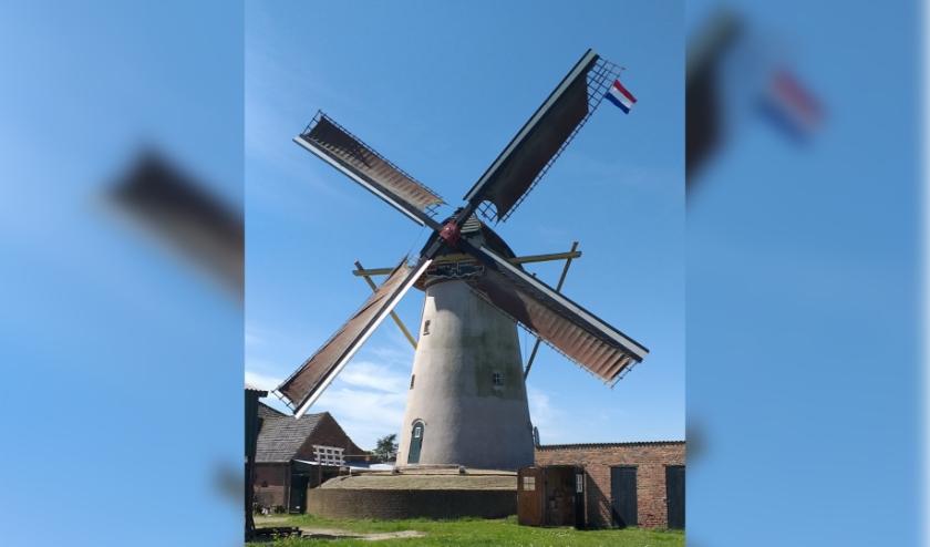 Zaterdag 27 juni is er een molenzeildag bij molen Vento Vivimus aan de Molenstraat 22 in Hurwenen.