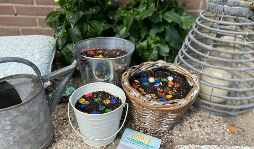 Meesterbakker Voskamp viert de zomer met tuinconfetti!