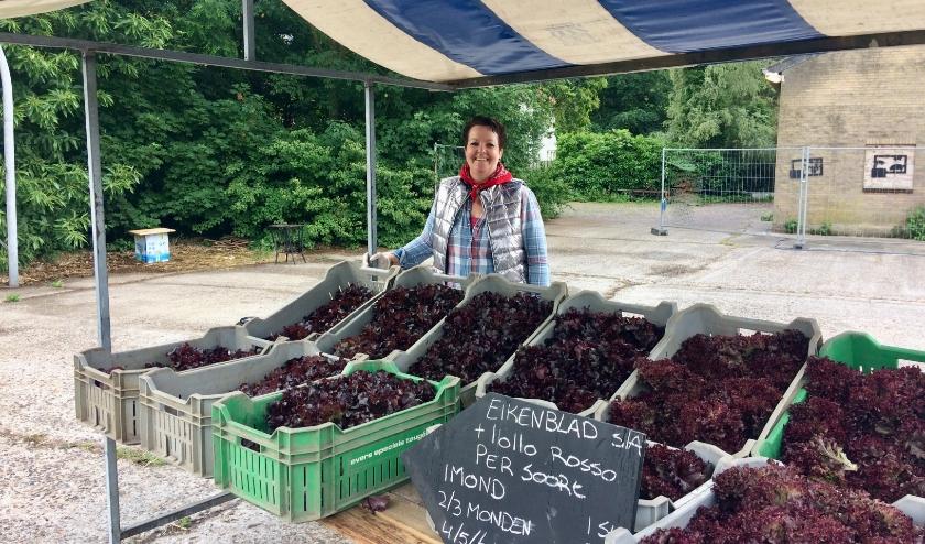 Op zaterdag 6 juni konden de allereerste groenten van Herenboerderij De Groote Heide opgehaald worden.
