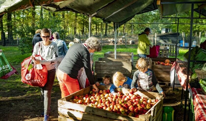 Ophalen van de oogst. Foto: Yvar Pel