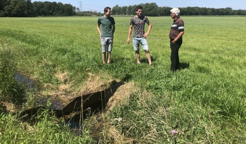 Bij melkveehouder Aarts in Asten, zijn rijplaten ingezet als stuw om het regenwater dat valt, vast te houden