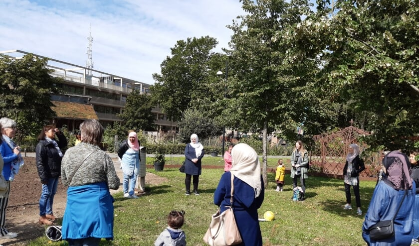 In het Amphion Park wordt een dobbelspel gespeeld om elkaar beter te leren kennen.