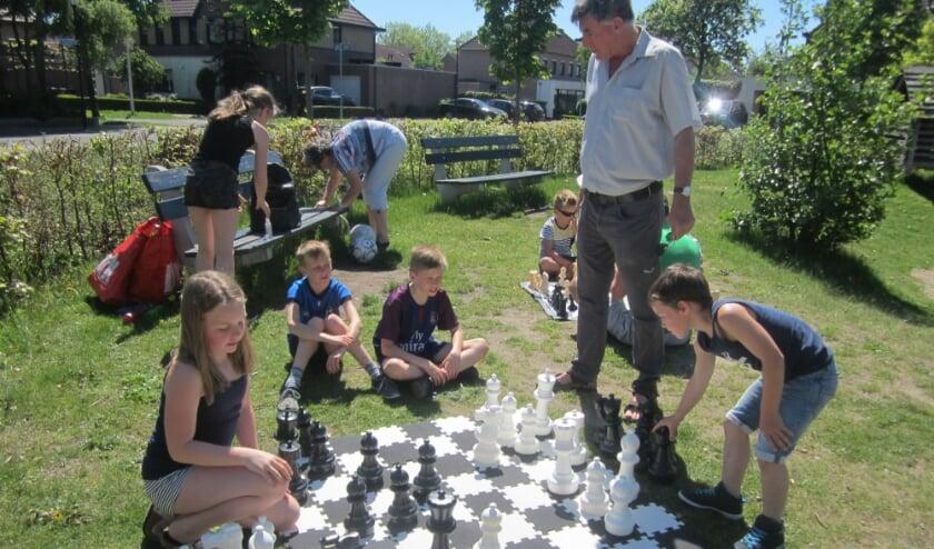 schaken op groot bord de Vlindertuin