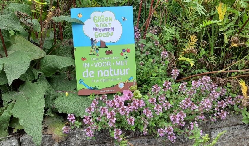 Voor meer informatie kunnen bewoners deze fleurige folder ophalen bij de zomerbalie (dinsdag, woensdag en donderdag) voor het Milieu Educatie Centrum Natuurkwartier. Foto: Naomi Wijling