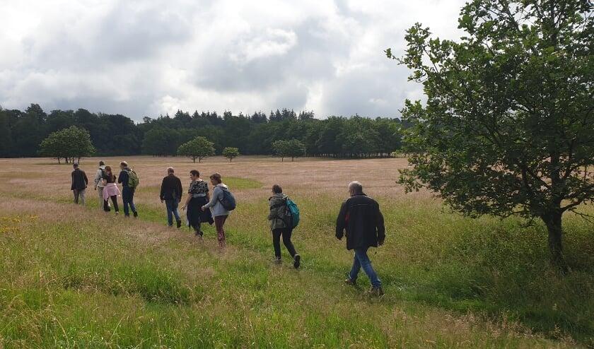 Er worden mooie plekken ontdekt tijdens de wandeling in Vaassen.