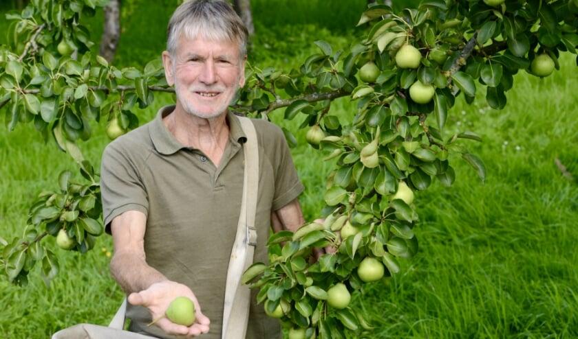 Bart Pijnenburg in zijn boomgaard aan de Nieuwe Steeg 87 (naast Geofort) in Herwijnen. Hij toont trots zijn eerste oogst de kruidenier-peer, een van de vele oude biologische rassen in de boomgaard.