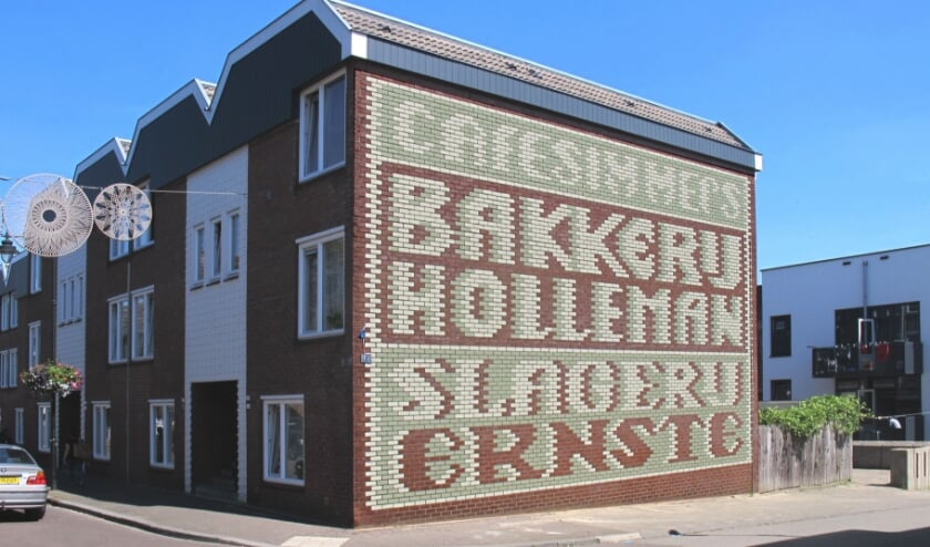 Hanneke van de Pol maakte een muurschildering in Klarendal waar het gebouw en het patroon van de muur perfect samenvalt met de reclame.