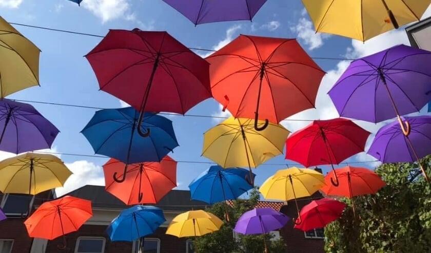 Paraplu's in de Terbporgse Hoofdstraat.