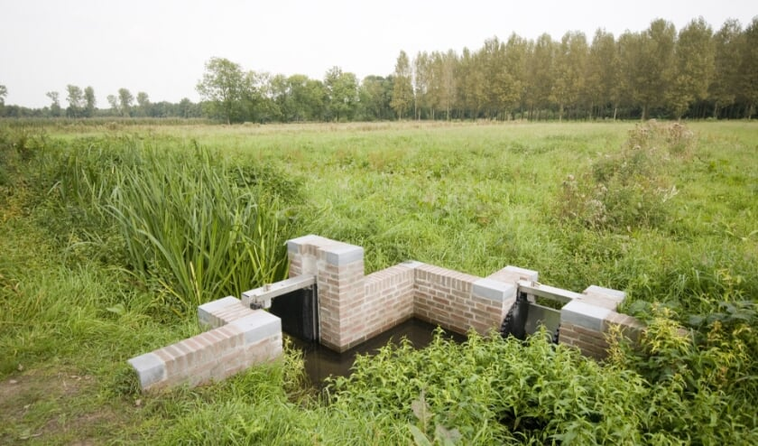 De Plateaux, natuurgebied in Bergeijk. Foto: Ferry Siemensma