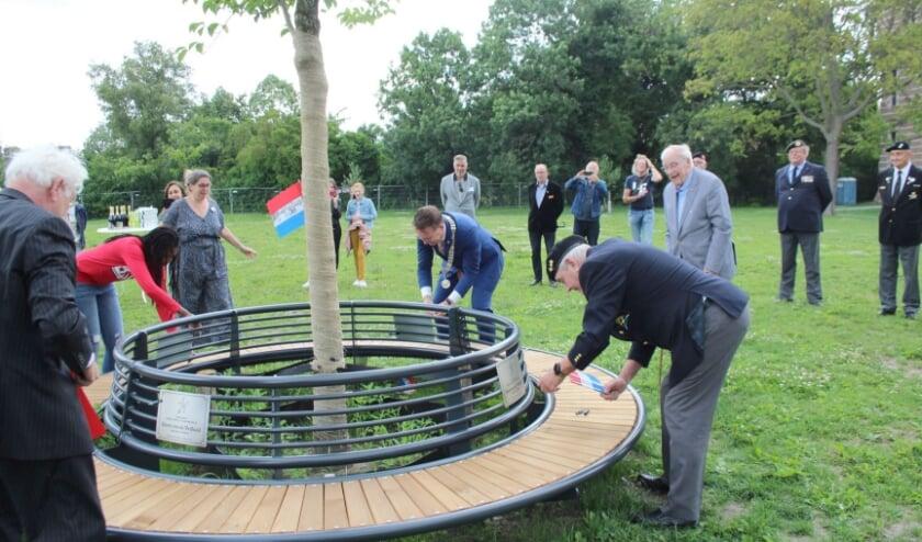 Burgemeester Van Domburg en enkele veteranen onthullen de Boom van de Vrijheid en de gedenkbordjes op de bank. (Foto: Lysette Verwegen)